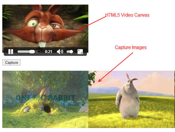 Video to Canvas Capture